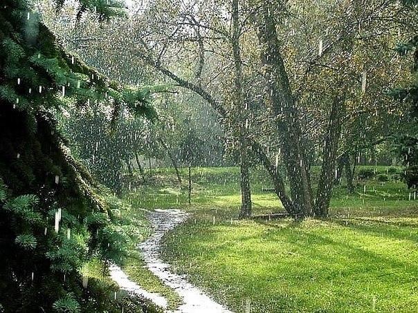 Дождь у славян