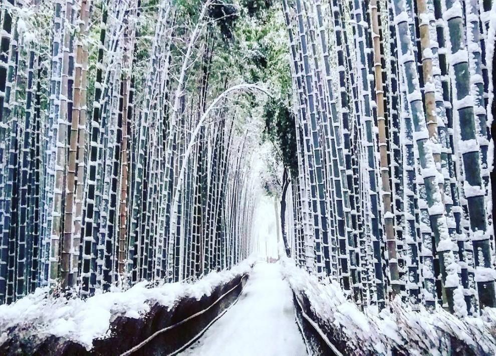 Пейзажи редкой красоты: зимняя сказка в Киото