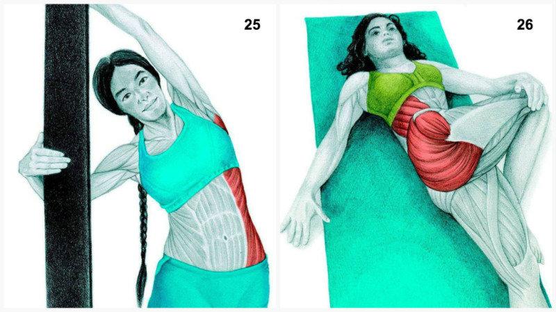 26. Растяжка ягодичных и внешних косых мышц лежа.27. Боковая растяжка внешних косых мышц и мышц