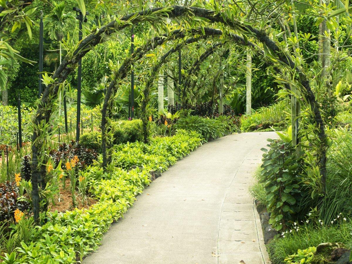 В Сингапуре суровые законы, но именно поэтому там очень чисто и безопасно. Местные говорят по-англий