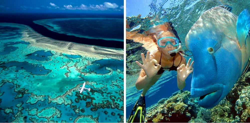 Great Barrier Reef— это 2900 отдельных коралловых рифов и900 островов вКоралловом море. Большой Б