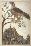 illustrations-anciennes-toutes-en-plumes-400-ans-06-723x1080.jpg