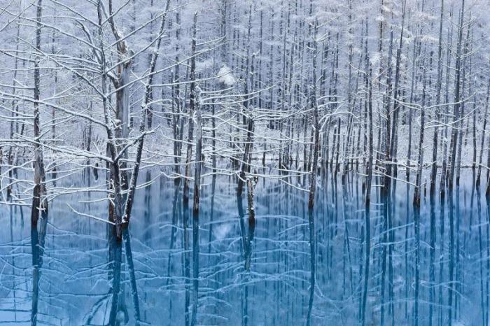 Голубой пруд в Хоккайдо (