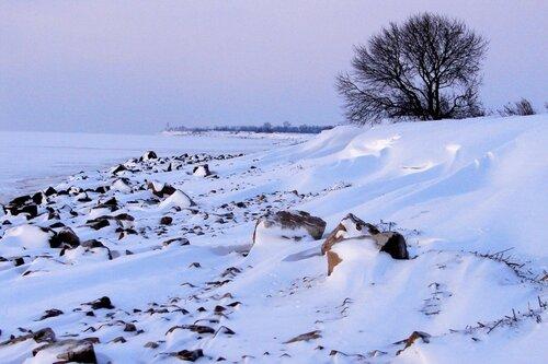 Зима 2010 003 ... фотограф Александр Улисский