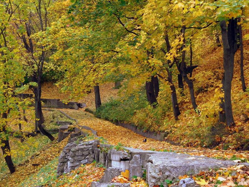Сыплет осень листьями желтыми...