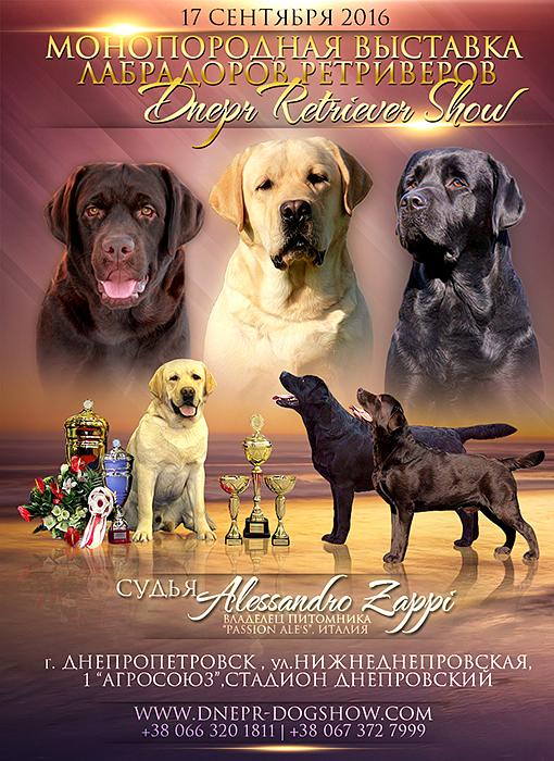 Фото-коллажи, презентации собак, анонсы вязок 0_1e7cee_726f4632_orig