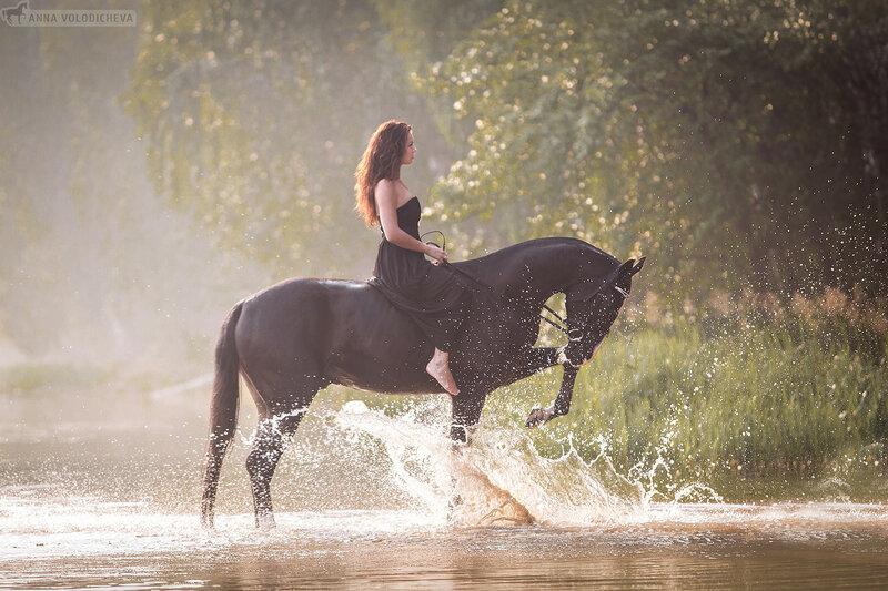 Конная съёмка. Фотосессия с лошадьми