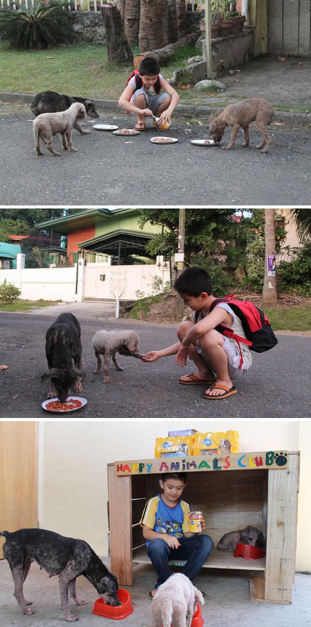 9-летний мальчик создал в гараже приют для животных.