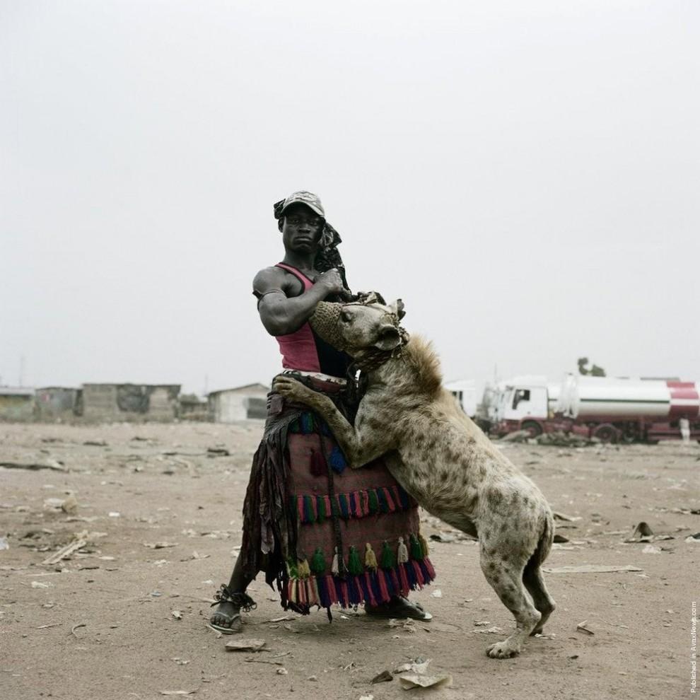 1. Абдулла Мухаммед с гиеной Маинасара в Огере-Ремо, Нигерия. (Photo by Pieter Hugo)