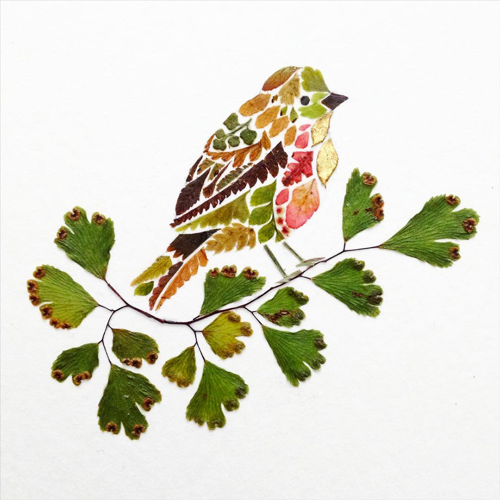 New Pressed Fern, Algae, and Gold Leaf Illustrations by Helen Ahpornsiri