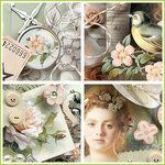 00_Bird_Song_VC_1z.jpg