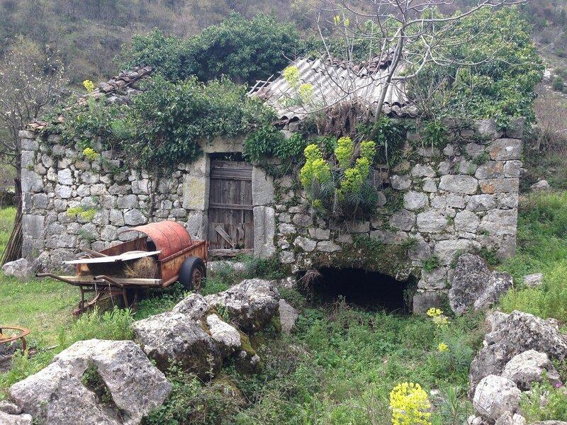 Поселяни, Скадарское озеро