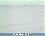 http//img-fotki.yandex.ru/get/62935/170664692.dd/0_175438_3e5626_orig.png