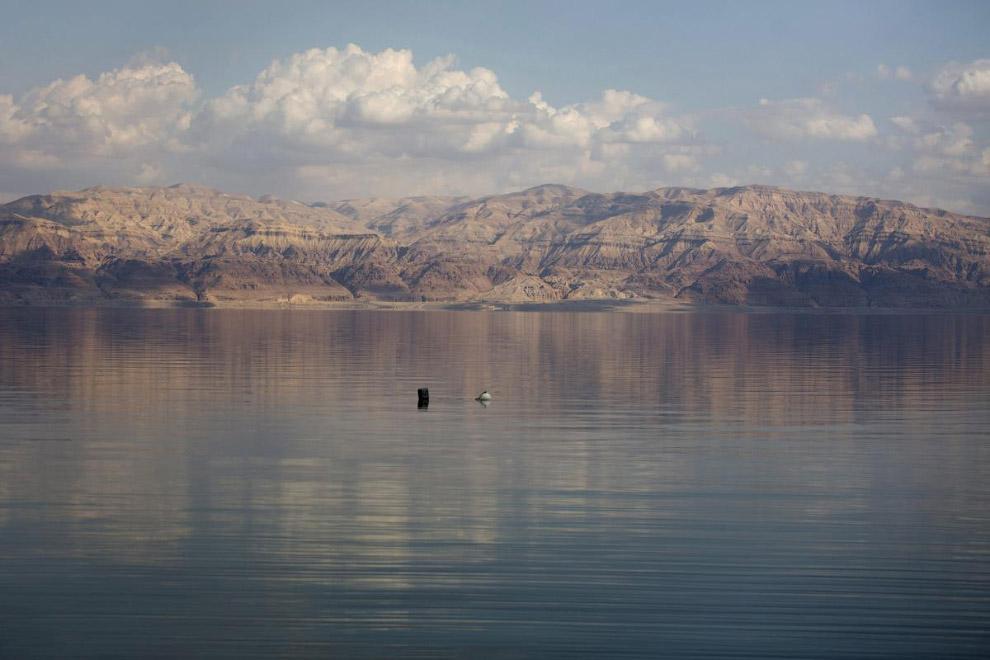Минералогический состав соли Мёртвого моря существенно отличается от состава соли других морей.
