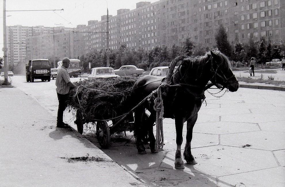 33. Москва, Юго-Запад, 1979 г.
