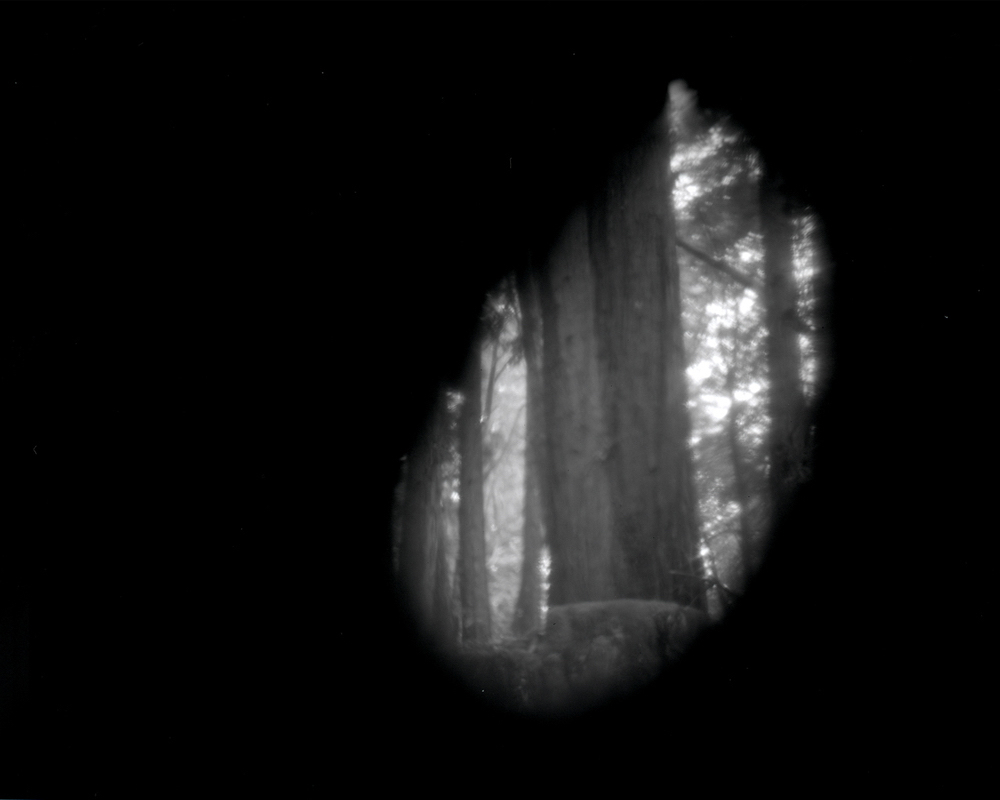 Site-specific pinhole image of Big Basin, image via David Janesko