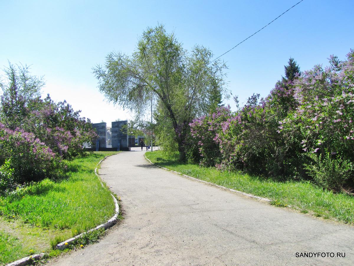 Цветущий Троицк — Сквер