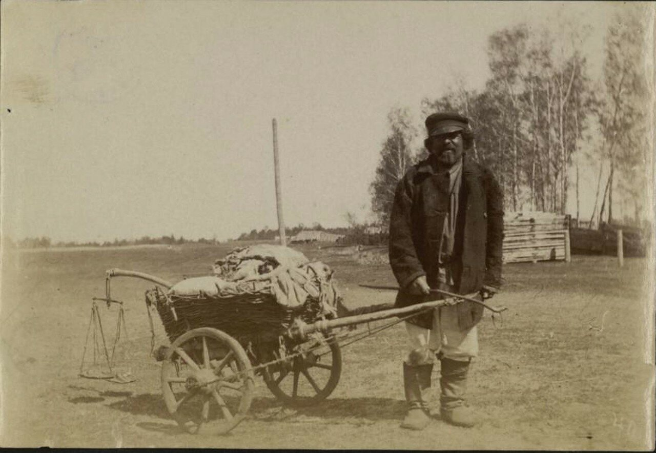 Западная Сибирь. Лотошник