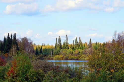 Коротко сибирское лето