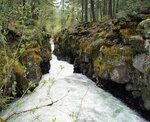Орегон. Река Рог (Rogue) в верхнем течении.