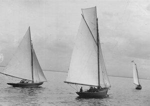 Яхты во время соревнований