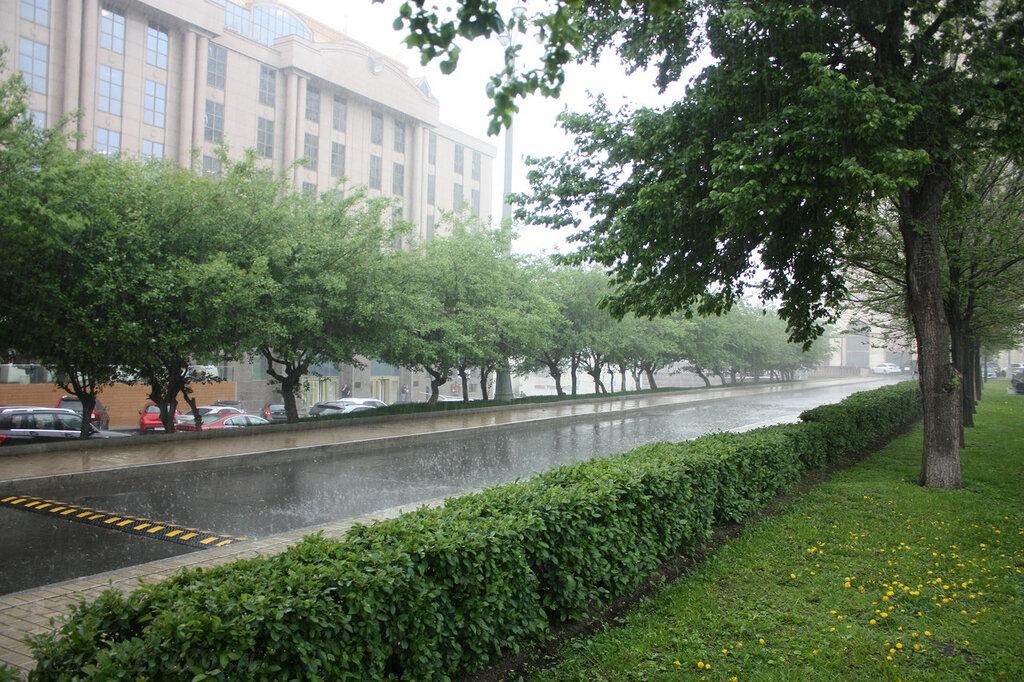 Дождь-24.jpg