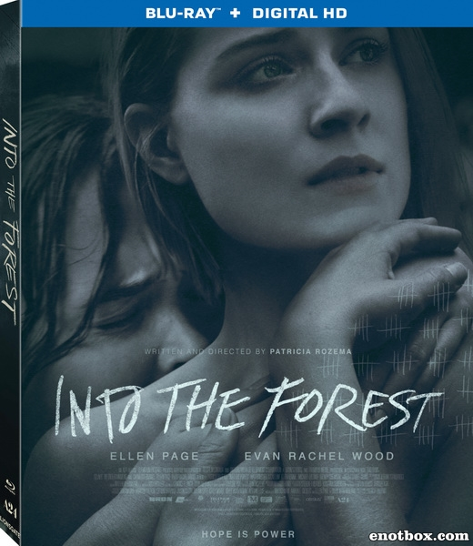 В лесу / Into the Forest (2015/BDRip/HDRip)