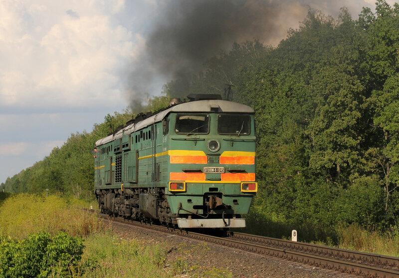 3ТЭ10МК-1345 на перегоне Паньково - Лужки-Орловские