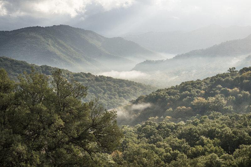 горный пейзаж в парке los alcornocales, андалусия