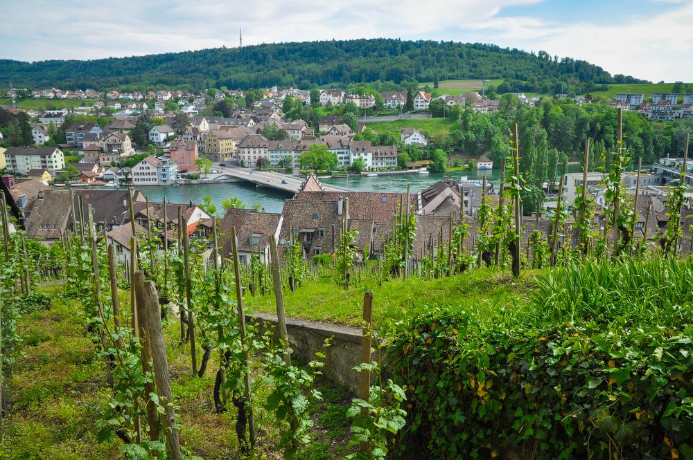 Schaffhausen-(30).jpg