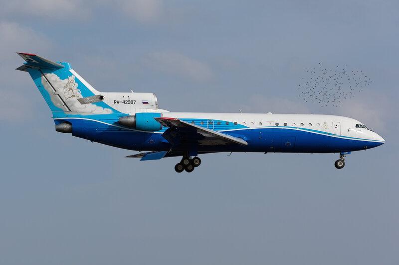 Яковлев Як-42Д (RA-42387) Як Сервис DSC_9688