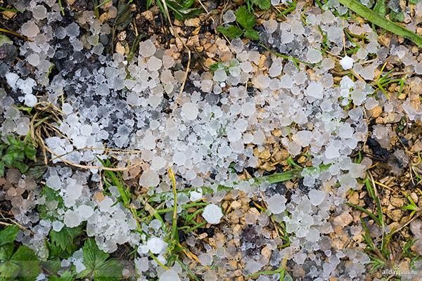 У природы нет плохой погоды, выпуск #06 | Очарование упавших капель.