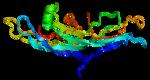 gonadotropin_x-ray_3.png