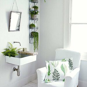 Ванная и растения