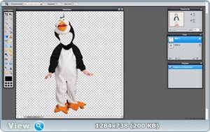 """Шаблон для фотошопа """"Пингвин"""""""