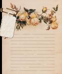 «Rose Wedding»  0_85651_d1954734_S