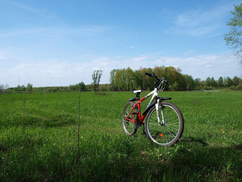 прокатный велосипед и вид вдаль