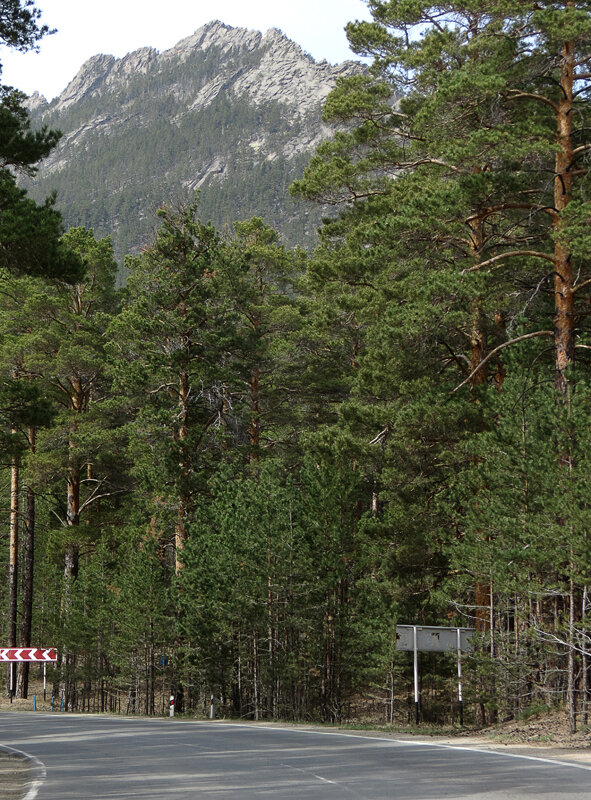 Боровое. Дорога к поляне Абылай-хана - 2012 год. Комментарии к фото - Кокшетау Онлайн