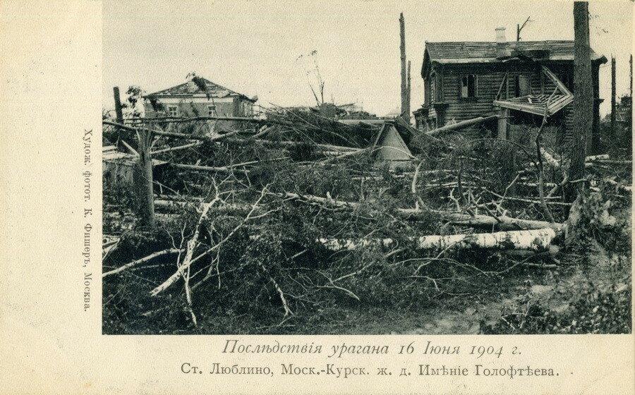 11871 Имение Голофтеева. Последствия урагана К. Фишер.jpg
