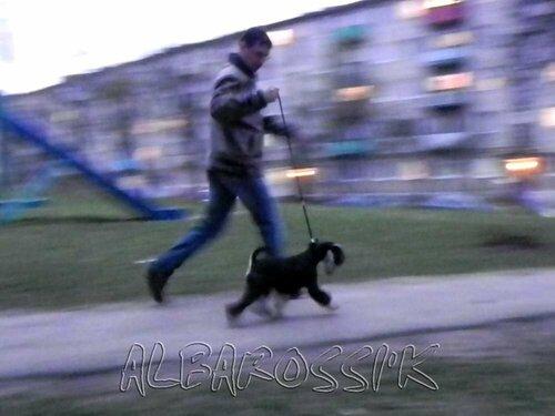 http://img-fotki.yandex.ru/get/6301/10248733.11/0_b2a2f_cc84372_L.jpg