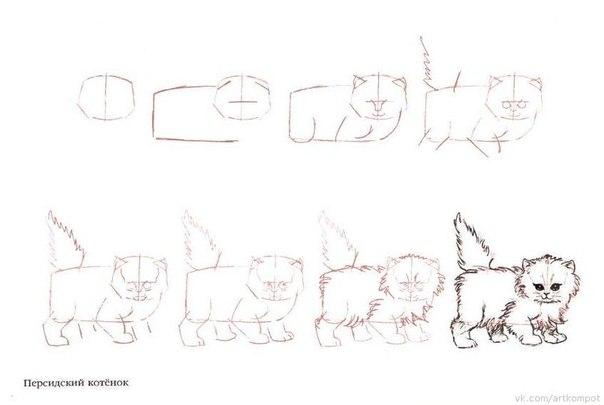Вторая подборки уроков рисования кошек, котов и котят.  И прочих кошачьих.