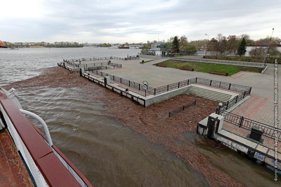 Высокая вода принесла в Казань массу старого камыша
