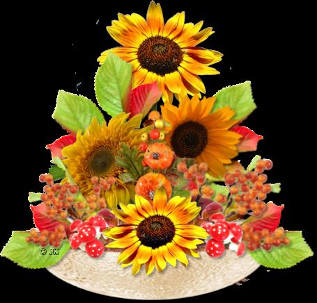 осенние цветы клипарт: