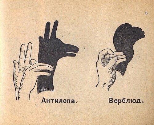 Театр теней рук