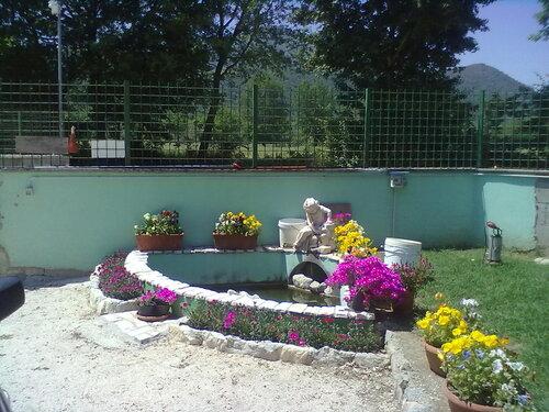 piscina per pesciolini e tartarughe vicino al cancello