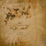 «Rose Wedding»  0_85660_b1253e13_S