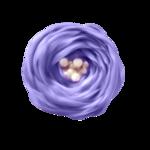 «La_magie_des_fleurs» 0_86294_b07dcff8_S