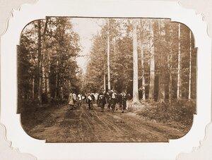 Группа егерей на одной из просек Беловежской пущи после окончания охоты.