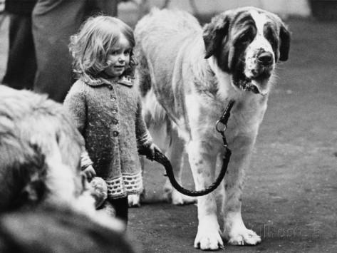 Small Girl with Bernard Dog by Shirley Baker