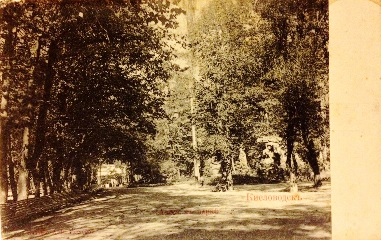 Аллея в парке